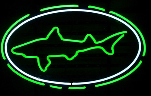 Dogfish Head Logo Neon Sign