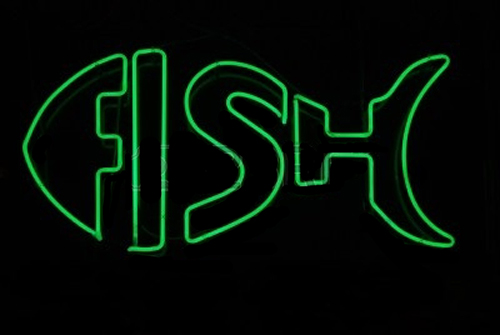 Green Double Stroke Fish Neon Sign