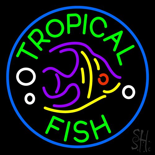 Tropical fish neon sign animals neon signs neon light for Fish neon sign